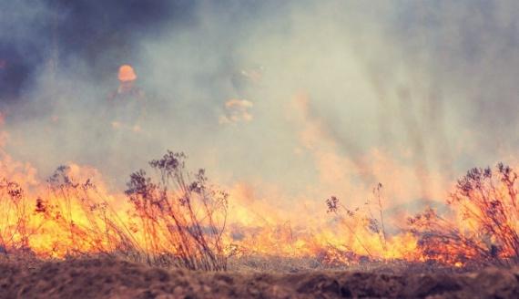Степной пожар модели свечей форекс