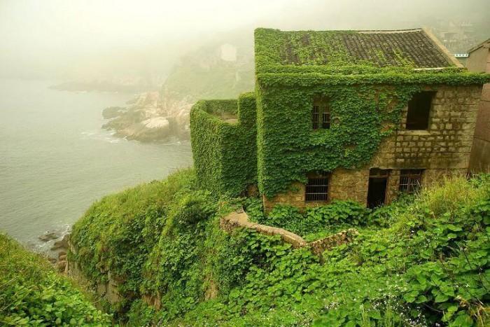 Деревня, поглощенная природой. Впечатляющий ленд-арт в Китае (Фото)