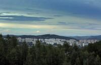 """Путин подписал закон о создании """"зеленого щита"""" вокруг крупных городов"""