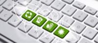 Советы WWF о том, как сделать офис экологичнее