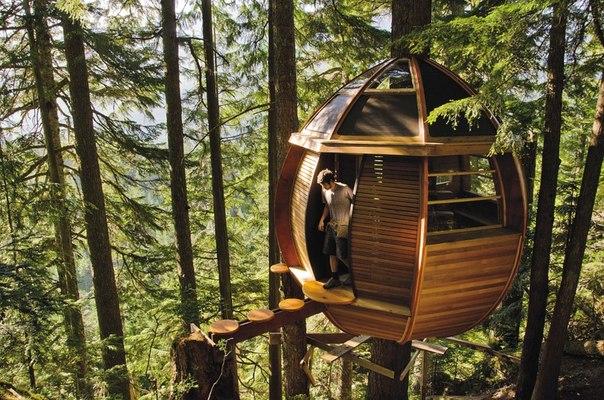 10 удивительных домов на деревьях, в которых захочет жить каждый
