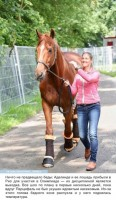 Спортсменка отказалась от участия в Олимпийских играх, чтобы спасти свою лошадь