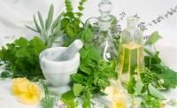 Травы, используемые в домашних рецептах красоты