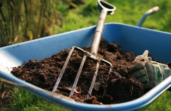 Советы, как из опавшей листвы сделать компост