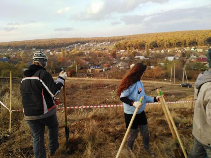Нас пригласили и обучали  практике посадки леса в команде Eco-Village Moldova (+Фото)