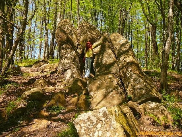 Дольмены Туапсе. Прогулка по эльфийскому лесу и горе Богатырка (+Фото)