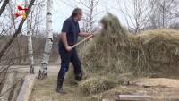 В муромских лесах поселился настоящий индеец (+Видео)