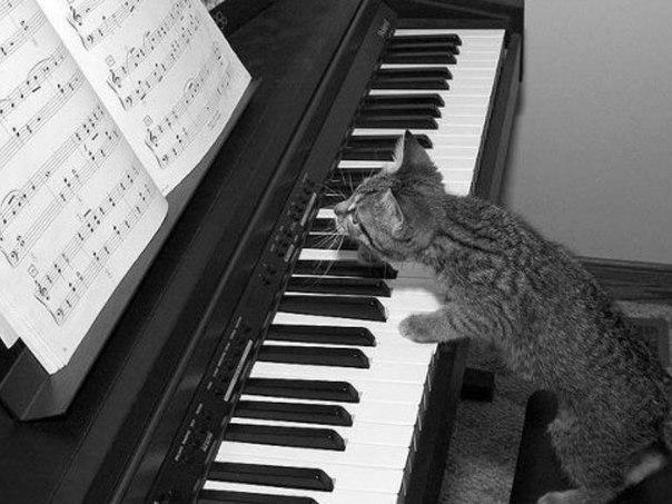 Muzica clasică întăreşte memoria omului