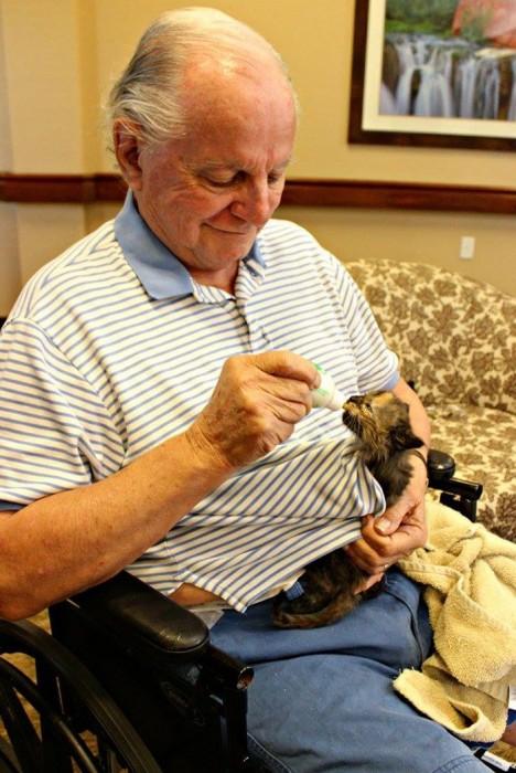 В Аризоне животные подарят свою любовь старикам и старость пройдет в любви и заботе