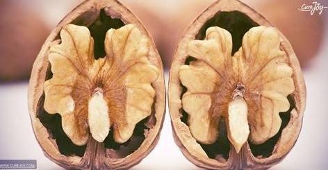 8 бесспорных полезных свойств грецких орехов для волос, кожи и здоровья