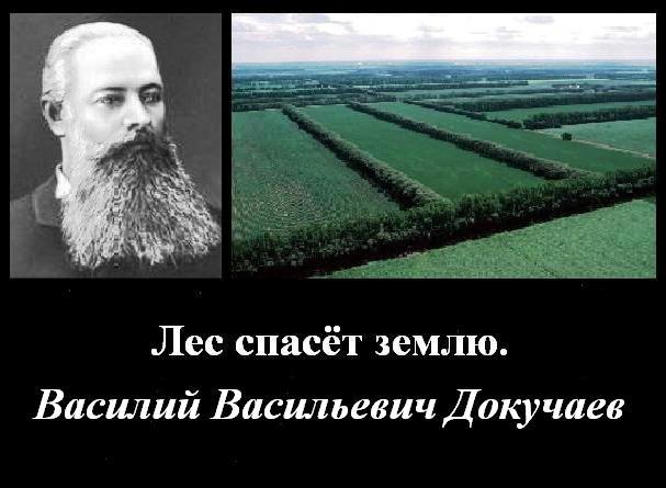 "Marele savant rus V. V. Dokuceaev: ""Pădurea va salva pămîntul"