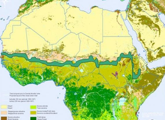 Великая зеленая стена Африки остановит пустыню в короткие сроки