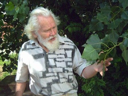 Человеку для полного счастья нужен только лес: он накормит, напоит, согреет и вылечит