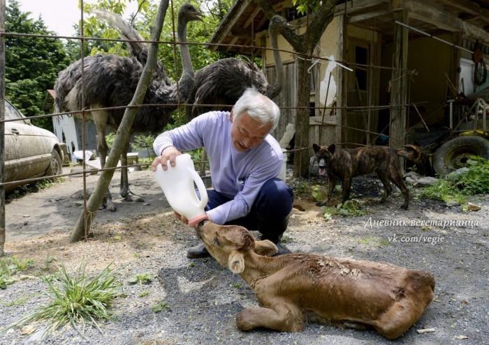 Человек, который спас японскую нацию от позора бесчеловечности!