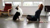 Утренняя гимнастика с лучшим другом (Видео)