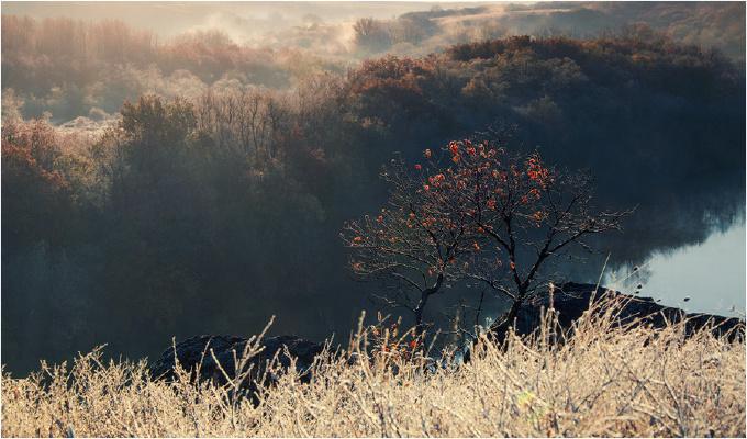 Чудо света Николаевщины, которое скоро может исчезнуть (+Фото)