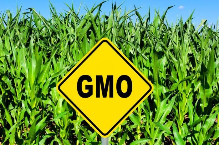 Тысячи человек поддержали марш против ГМО корпораций в Швейцарии