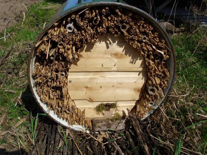 Фото-инструкция - как привлечь полезных насекомых