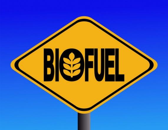 Теперь энергию можно добывать из пищевых отходов!