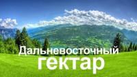 Программа «дальневосточный гектар» приобретает все большую популярность