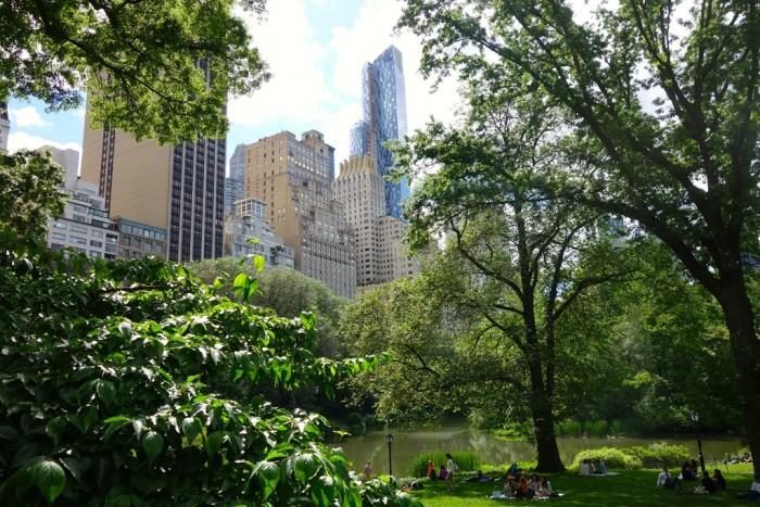 1 миллион деревьев изменят Нью-Йорк и другие крупные города