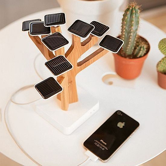 Домашнее солнечное дерево (+Фото)