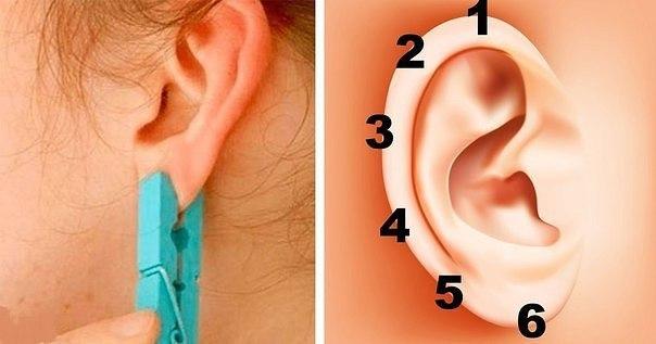Исцеляющие точки на мочке уха