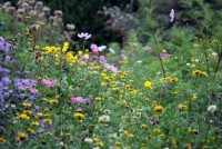 Привлекайте полезных насекомых в ваш сад