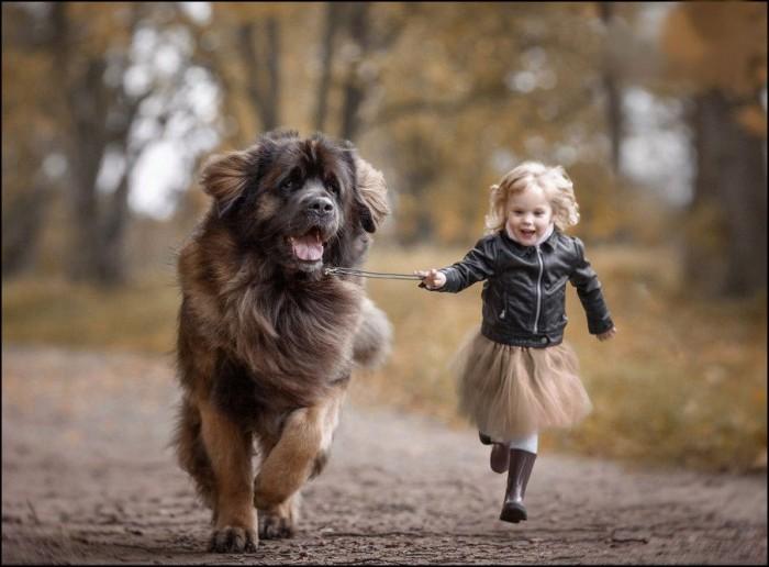 Маленькие дети и их большие друзья (Фото)