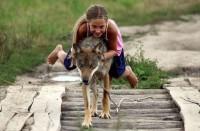 В белорусской семье волки стали домашними животными (+Фото)