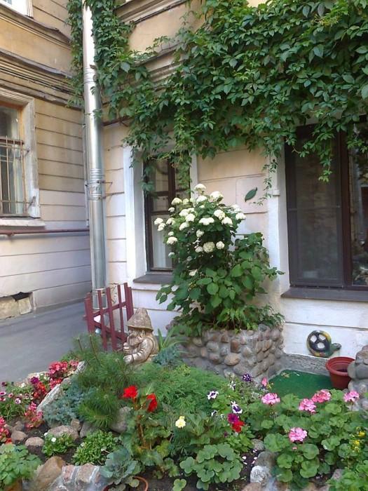 Самые замечательные дворы, созданные руками петербуржцев (+Фото)Самые замечательные дворы, созданные руками петербуржцев (+Фото)