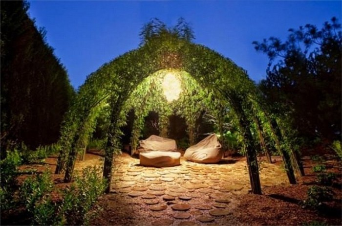Красота плетеных деревьев (Фото)