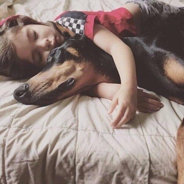 Маленькая девочка и ее верный друг (Фото)