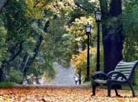 Как же он красив - этот город в Лесу! Волшебный, осенний Кишинев! (Видео)