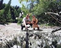 """Жители Сибири этим летом наблюдают необычайное """"нашествие"""" бабочек-боярышниц (Фото)"""