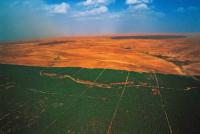 Великая зеленая стена Африки остановит пустыню навсегда! (+Видео)