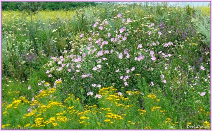 Как легко и быстро создать плодородный слой почвы?