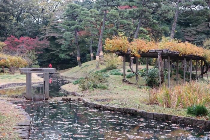 Сад природной красоты (+Фото)