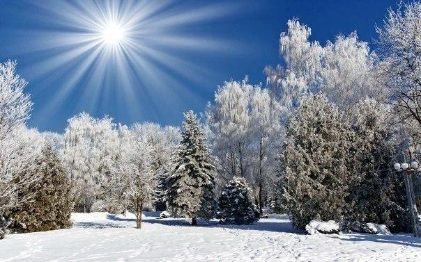 Восхитительные зимние пейзажи под голубыми небесами (Фото)