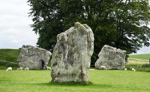 Живые камни! (+Фото)