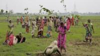 66 миллионов деревьев посадили в Индии за пол дня (Видео)