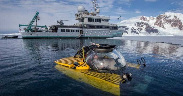 Тропики расположились прямо на морском дне Антарктиды (Видео)