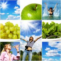Как мы уничтожаем наше здоровье? (Видео)