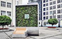 Стены изо мха, очищающие воздух