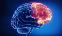 Шокирующее исследование мозга - Энергия и мозг (Видео)