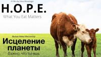 Хочешь исцелить планету? Перестань есть животных! (Видео)