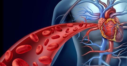 Как предотвратить сердечные заболевания и инсульт