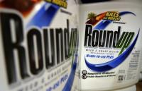 Суд обязал Monsanto выплатить 289 млн долларов