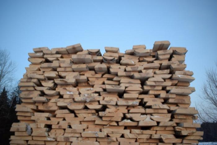 Активисты Народного Фронта остановили незаконную рубку леса на 1 млрд рублей