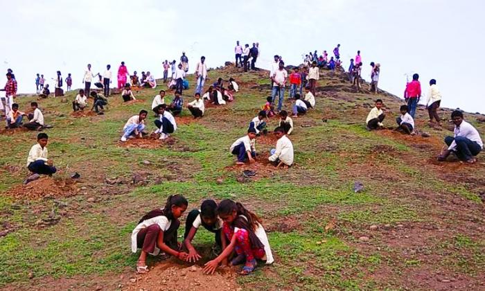 Волонтеры посадили более 30 миллионов деревьев в Индии (Видео)